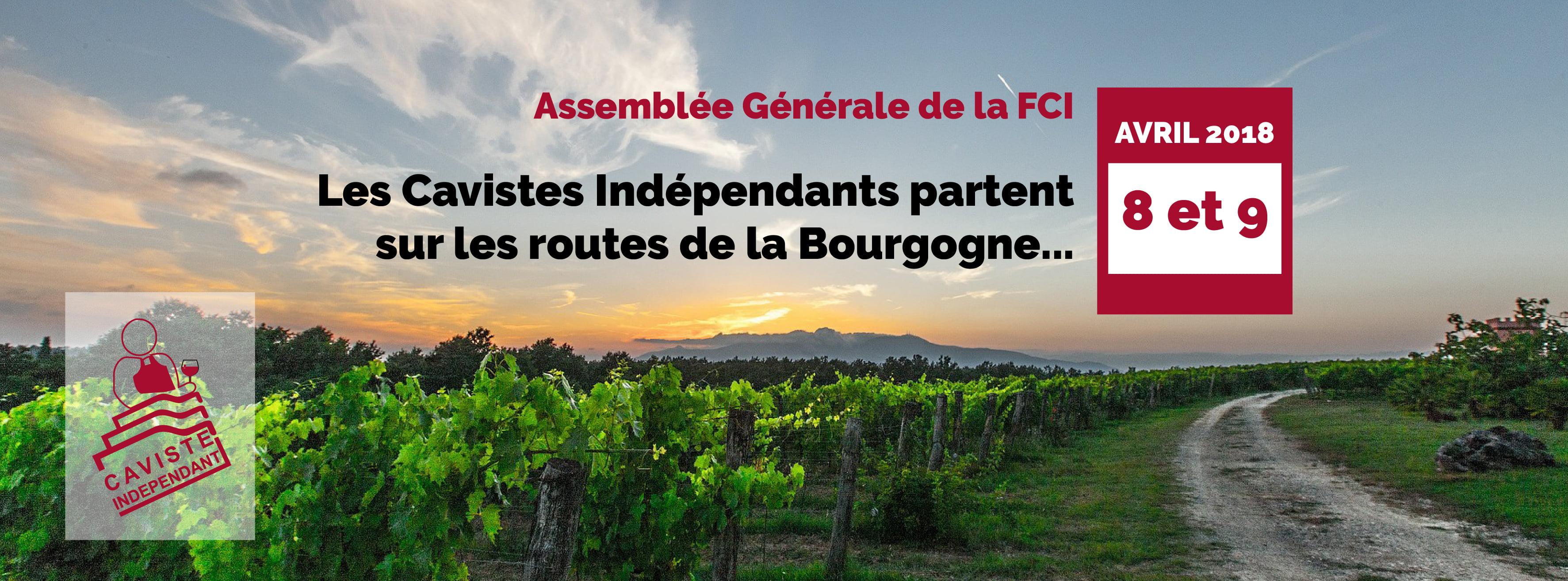 AG-FCI
