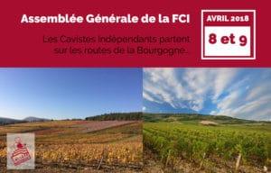 Devinette AG FCI - Vignes